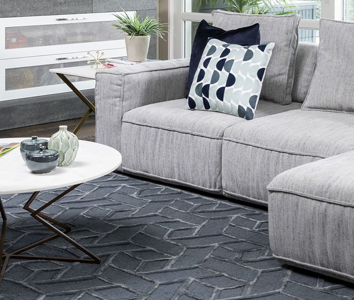 A grey couch on a rug with a coffee table